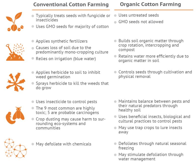 Conventional Versus Organic