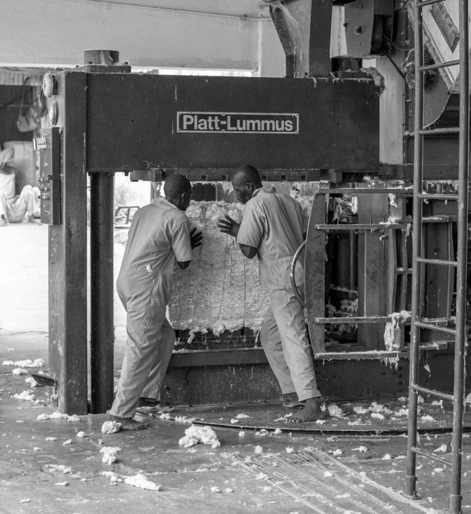 Cotton lint bail