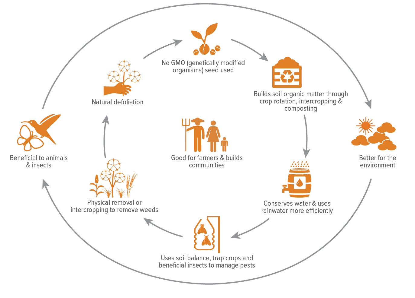What_Is_Organic_Cotton_EN- Source- AOC