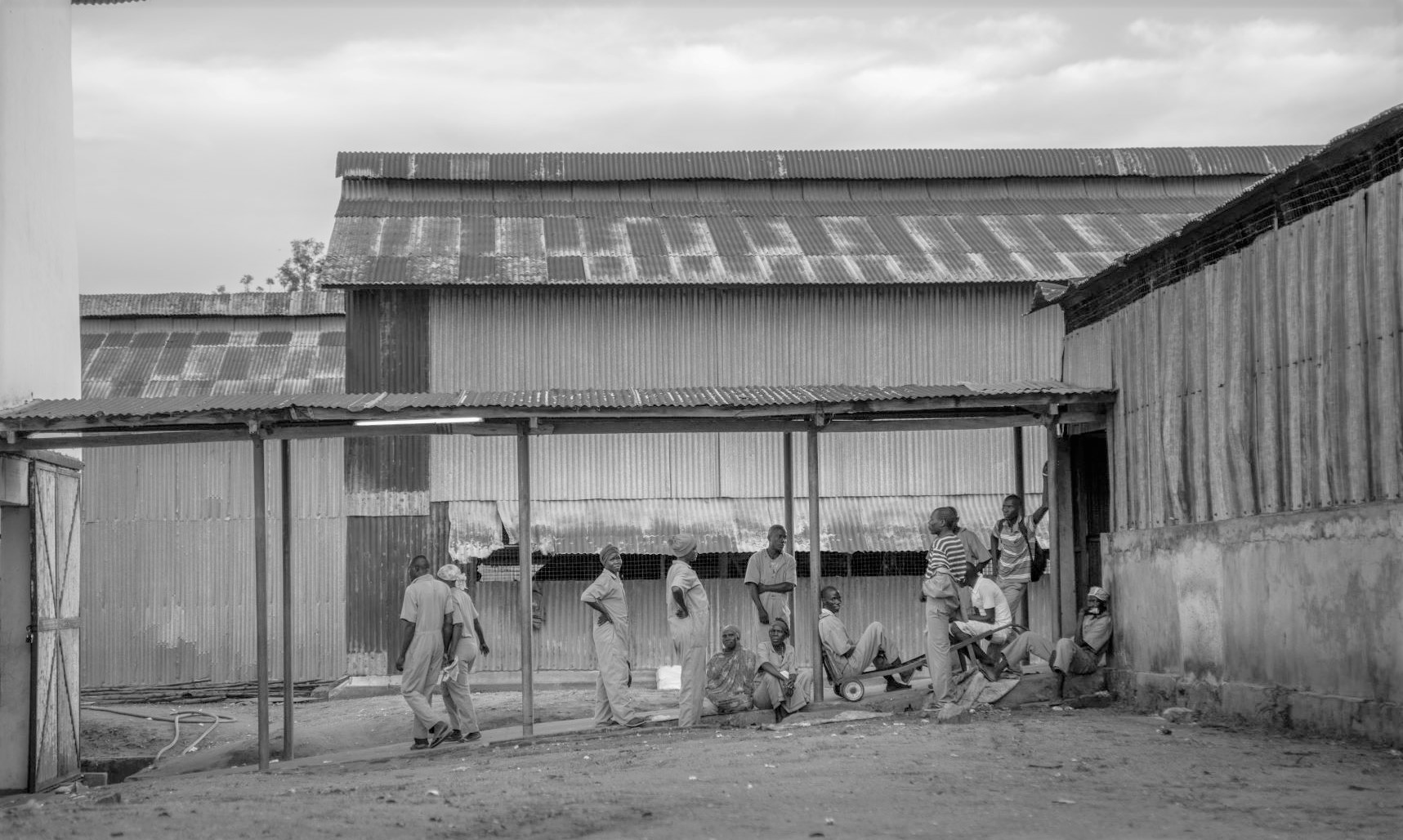 Workers and cotton gin